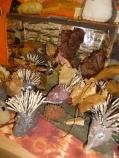 hedgehogs-display-002