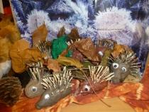 hedgehogs-display-003